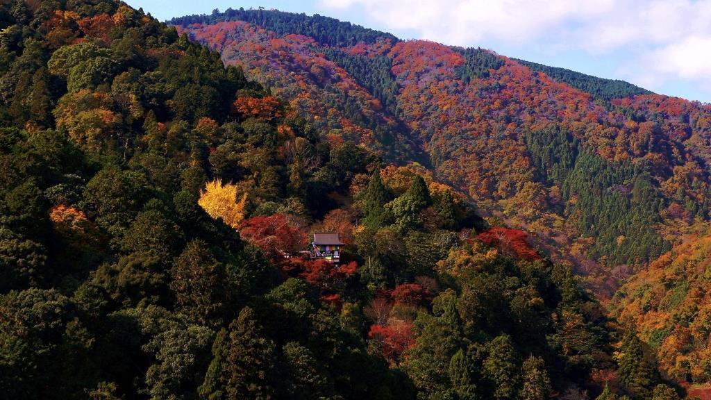 京都嵐山の隠れ秘境 大悲閣 千光寺