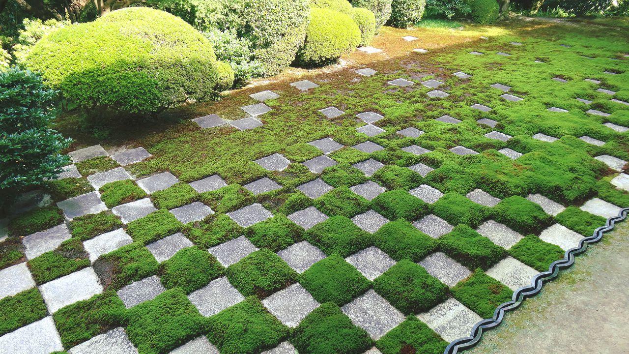 東福寺本坊庭園 北庭